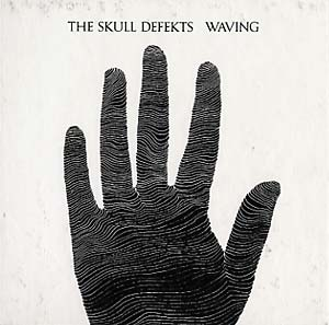 THE SKULL DEFEKTS -